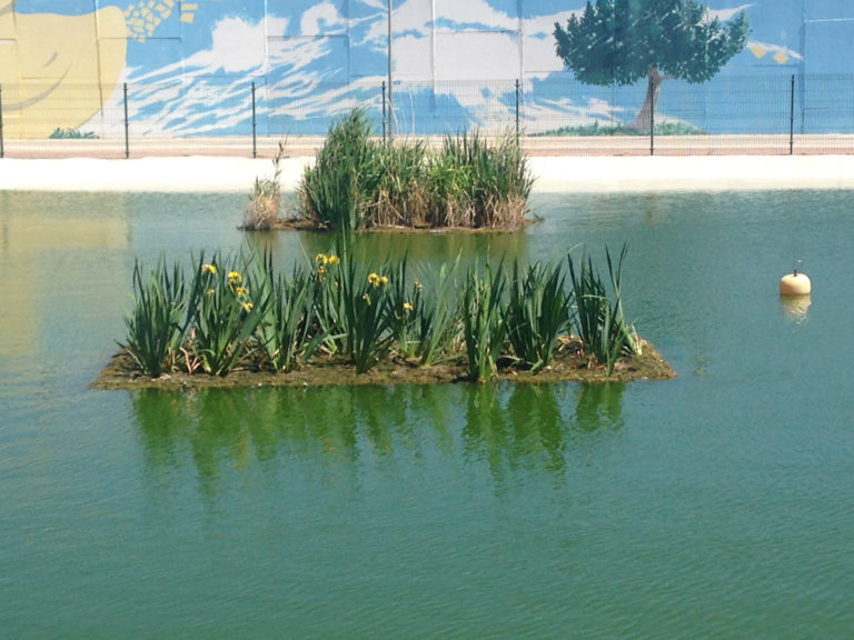 islas_artificiales_lago-768x576[1]